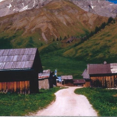 Architettura tradizionale di montagna in trentino: caratteristiche, trasformazioni e tutela - FFDL