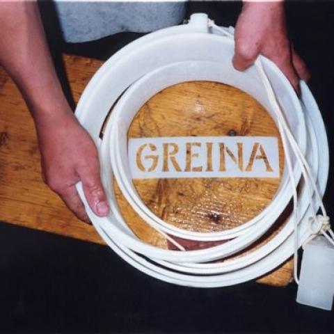 Greina - FFDL