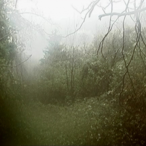 Mala apokalipsa - FFDL