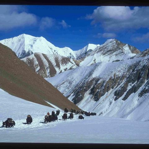 Crossing the Himalaya - FFDL