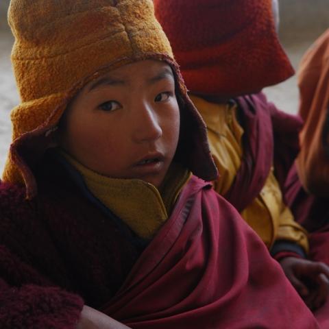 Himalaya, le chemin du ciel - FFDL