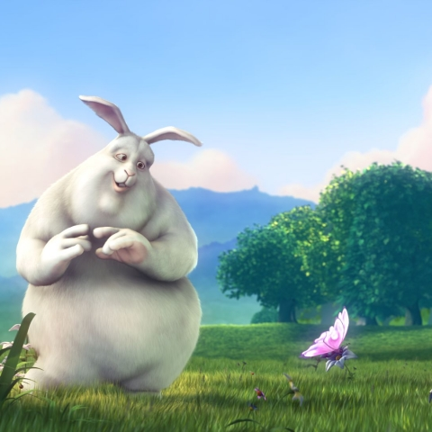 Big buck bunny - FFDL