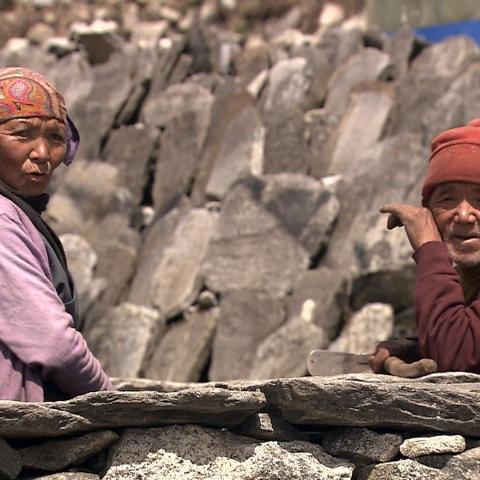 The sherpas' quest - FFDL