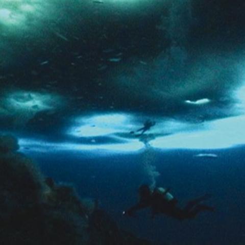 The Wild Blue Yonder - FFDL