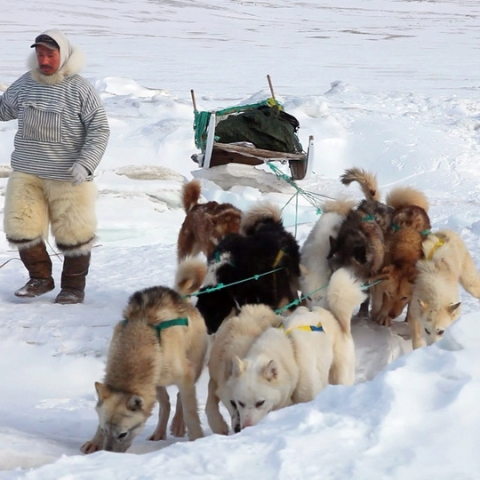 SILA AND THE GATEKEEPERS OF THE ARCTIC - FFDL